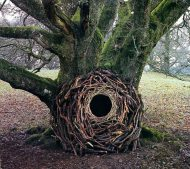 Andy-Goldsworthy-4