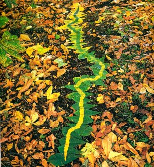 Andy Goldsworthy5